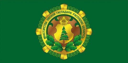 "Министр лесного хозяйства Виталий Дрожжа направил поздравление коллективу УП ""Белгипролес"""