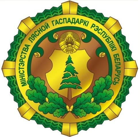 Сегодня проходит заседание коллегии Министерства лесного хозяйства Республики Беларусь
