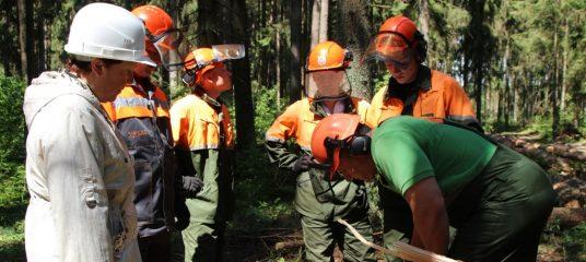 Отдел охраны труда УП «Белгипролес» - за безопасные условия труда