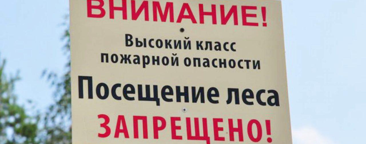В Беларуси снова вводятся запреты на посещение лесов