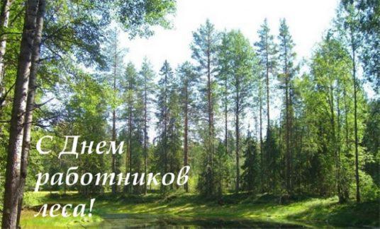 Уважаемые работники леса, ветераны отрасли!
