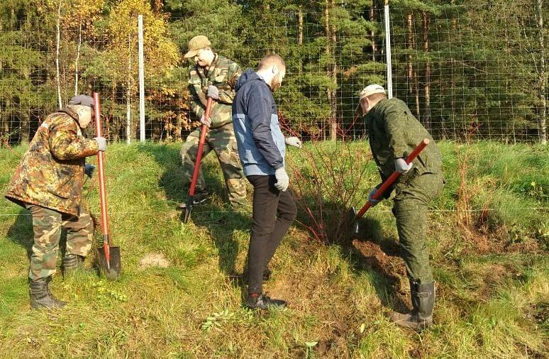 28 марта стартует республиканская добровольная акция «Неделя леса»