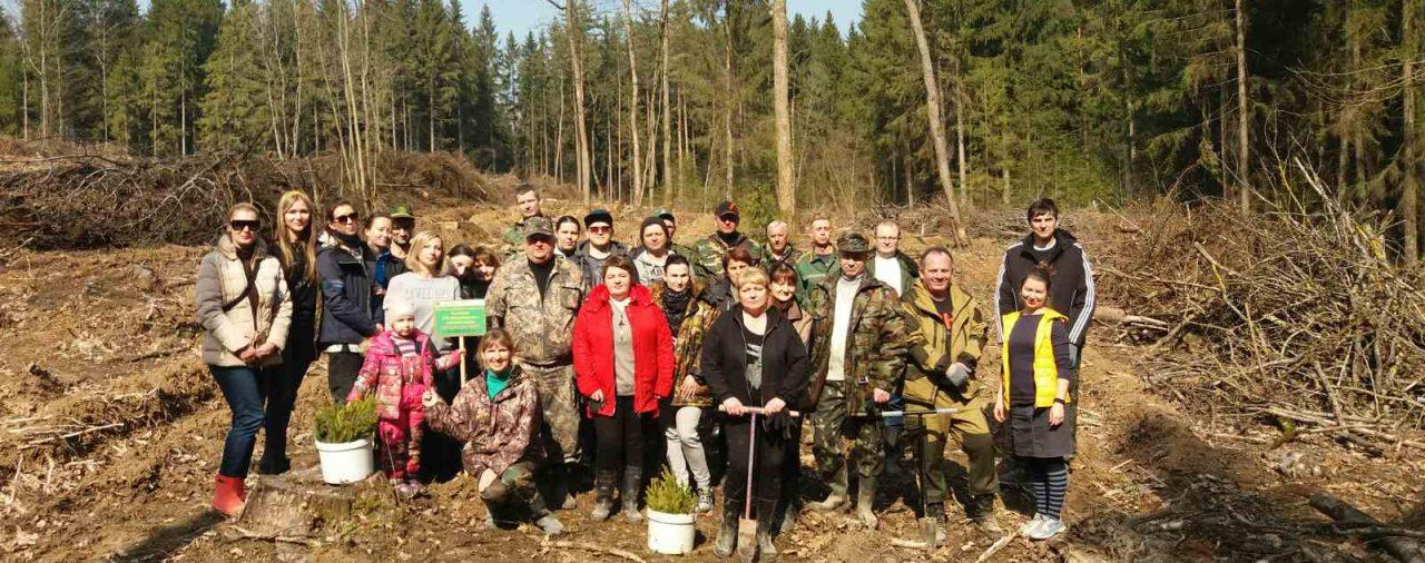 Труд нашего коллектива в рамках акции «Неделя леса-2020»