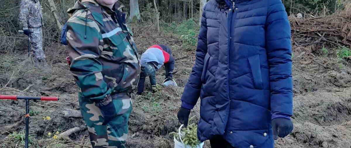 """Акция """"Чистый лес"""" пройдет в Беларуси 9 октября"""