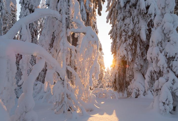 Важно знать при усилении морозов