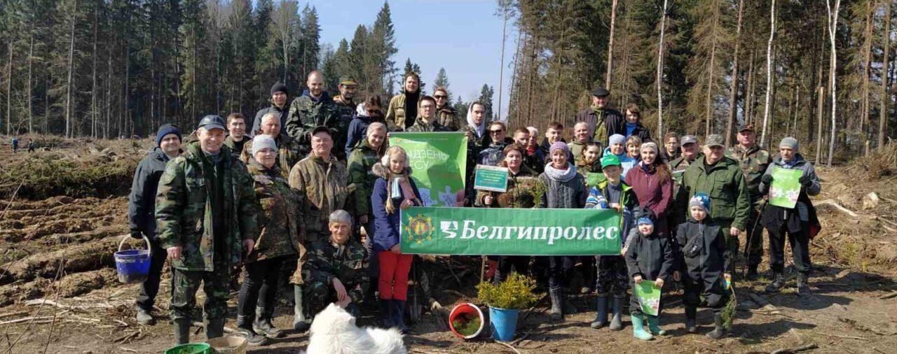 Мы внесли свой вклад в акцию «Неделя леса-2021»