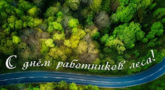 Уважаемые работники лесной отрасли                                УП  «Белгипролес»,  дорогие ветераны!